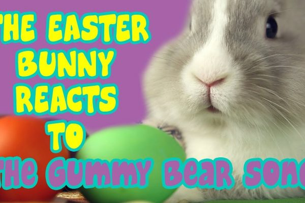 The Easter Bunny Reacts to the Gummy Bear Song